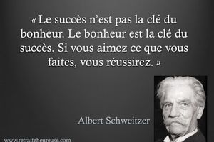 Albert Schweitzer - 4 Citations