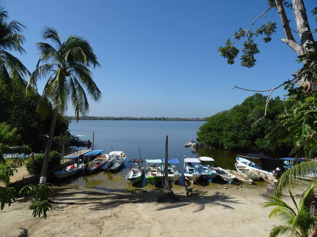 Playa Mazunte-Jardín Botanica Helia Bravo Hollis
