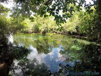 Aquario naturel Bonito (Brésil en camping-car)