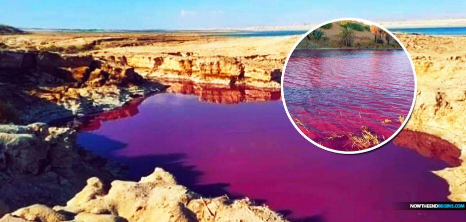 Image du jour : L'eau devient rouge sang près de la mer morte