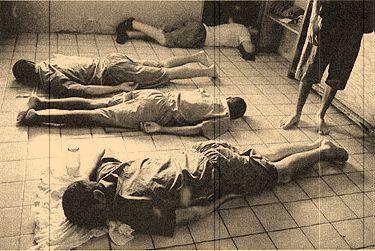 Les enfants perdus de Tranquility Bay (Docu) [VF]