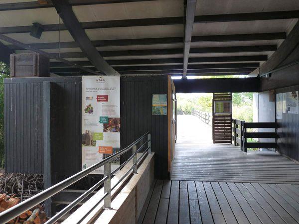 La Réserve ornithologique du Teich (Bassin d'Arcachon)