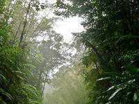 GUADELOUPE (Basse Terre et Terre de Haut) 🇬🇵🇫🇷