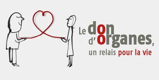 Le don d'organe est autorisé, voir même recommandé en islam.