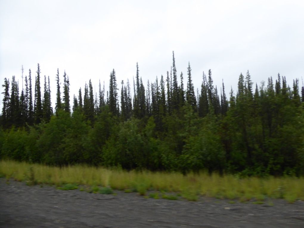 """On the road ""pour l'Alaska"