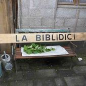 Visite à la bibloiothéque de Les Voivres - LES VOIVRES 88240