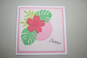Bisou tropical