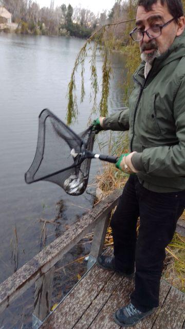 20201200  Sauvetage poissons Baisse de Raillon & Aulnes