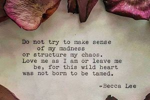 Becca Lee - English - 2 Quotes