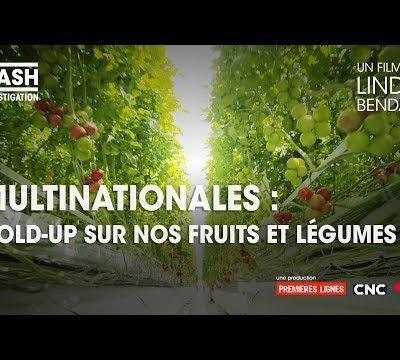 Cash investigation - Multinationales : hold-up sur nos fruits et légumes 2019