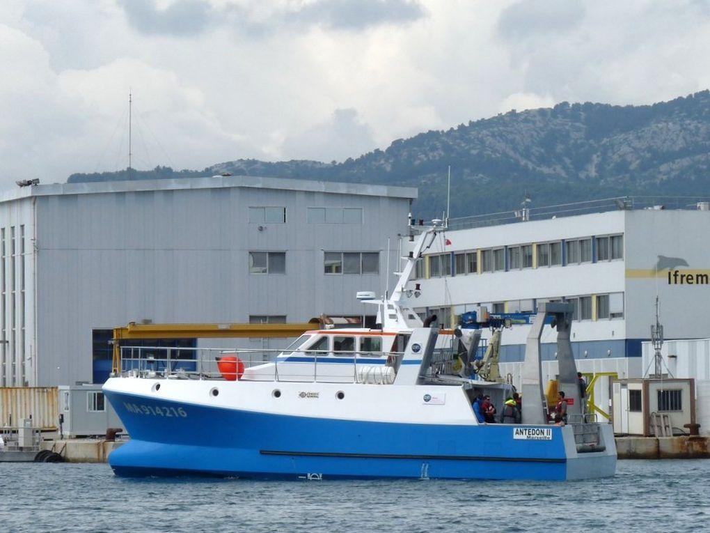 ANTEDON II , Navire océanographique cotier