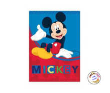 plaide polaire mickey 2