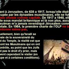 Le Mythe palestinien ou l'invention d'un peuple et d'une nation