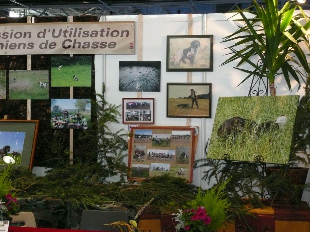 2012 - CHAMPIONNAT-DE-FRANCE-METZ