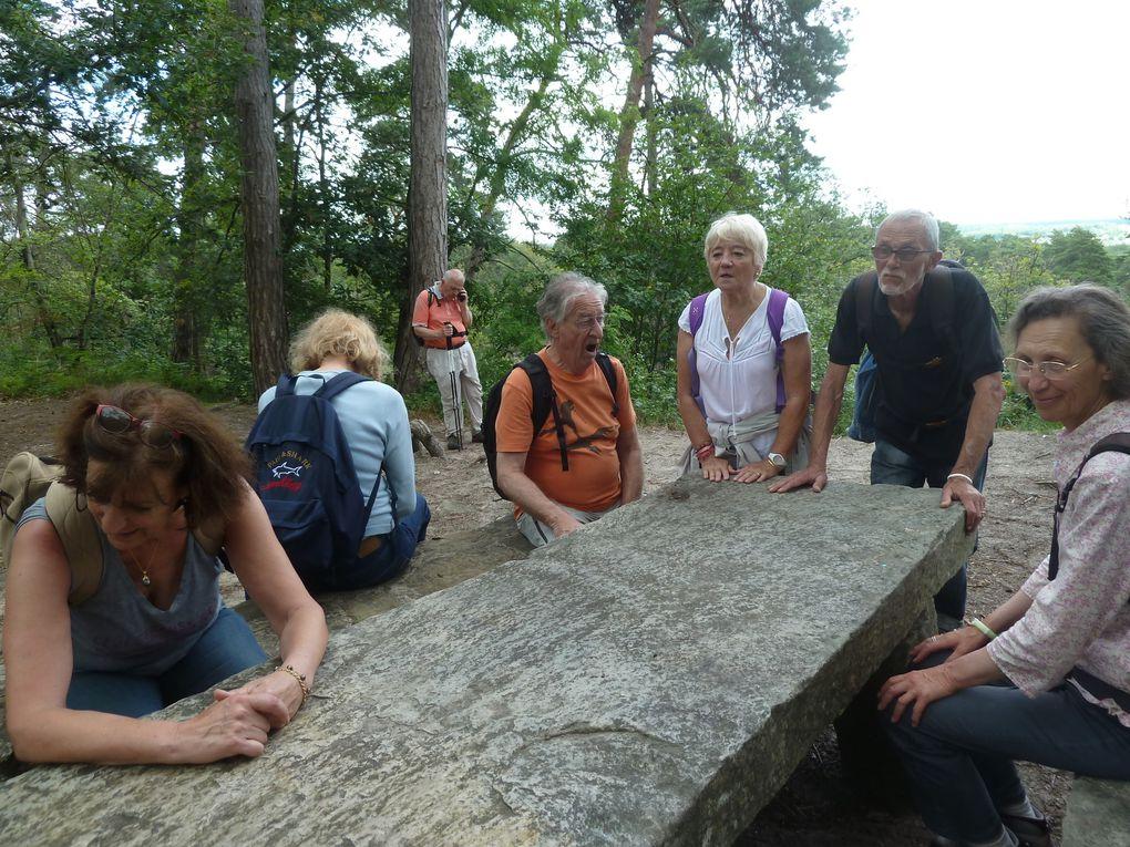 Randonnée de Fontaine-le-Port à Fontainebleau - 16,66 km.