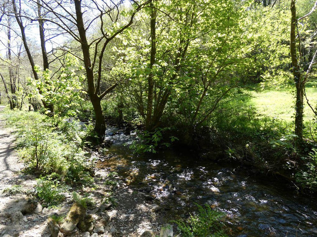 Sentiers à la Roche