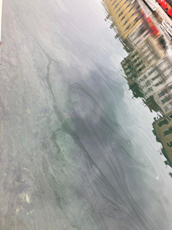 Nouvelle pollution des canaux, Tous complices !