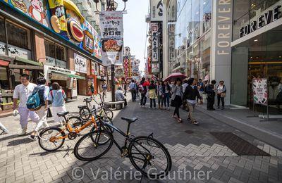 Osaka et Himeji