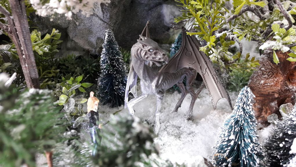 Un noël en compagnie de Harry Potter à Poudlard - village 2017