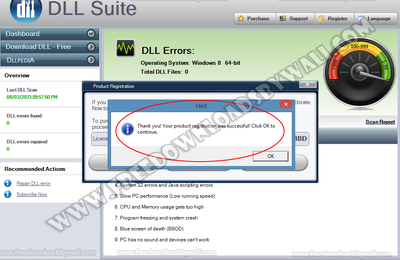 Dll Suite 9 Crack Serial Key + License Key Free Download