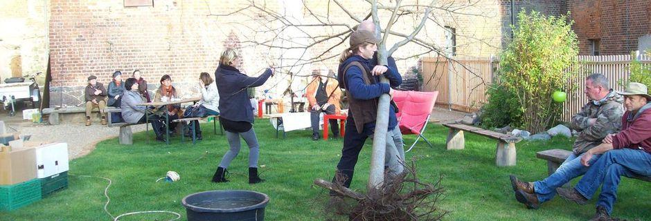 Ein Apfelbaum vor der Mühlenwirtschaft...