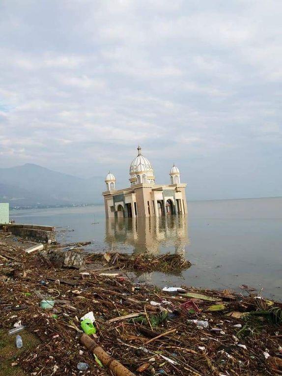 Célèbes, Indonésie:  Le tsunami fait au moins 384 morts (vidéos)