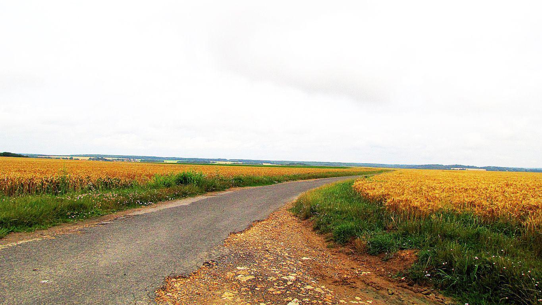 carrefour_D4_Chemin vers Le Buisson Fondu
