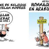 """Le caricaturiste algérien Ali Dilem """"souhaite bon courage"""" à la France !"""