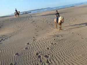 Méga explorateurs dans les ruines perdus au milieu des dunes