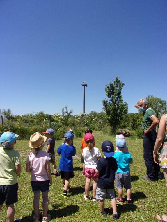 Les petits de l'école maternelle de Labeuvrière au jardin de l'Ermite