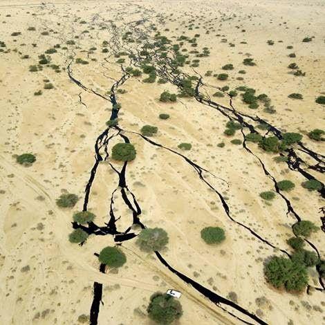 Israël: Le nettoyage de la catastrophique marée noire qui touche la réserve d'Arava prendra des années