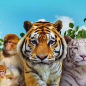 Accueil - Parcs Zoologiques Lumigny