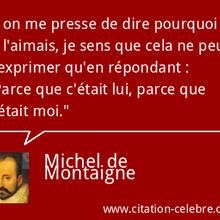 """""""Parce que c'était lui, parce que c'était moi."""", la citation culte de Montaigne sur son amitié avec La Boétie"""