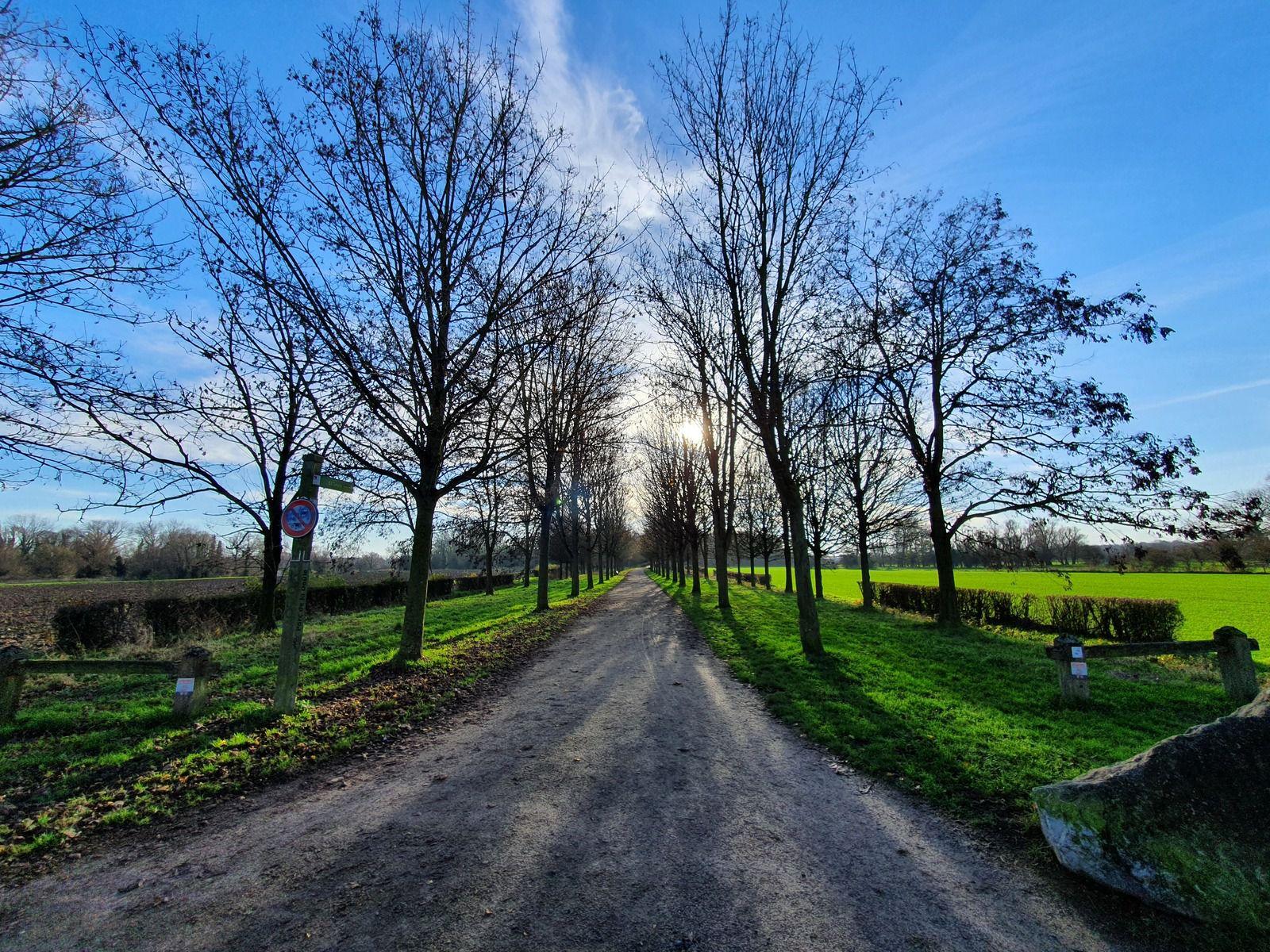 Le parc des Ansereuilles, Wavrin