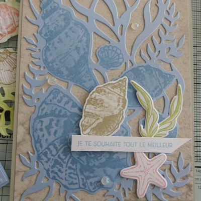 [Stampin'Up!®] 2 exemples de cartes avec la Collection Sable et Mer