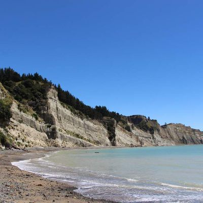 Hawke's Bay : Cape Kidnappers
