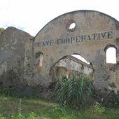 CAVES COOPERATIVES ALGERIENNES - Caves Coopératives du Languedoc Roussillon