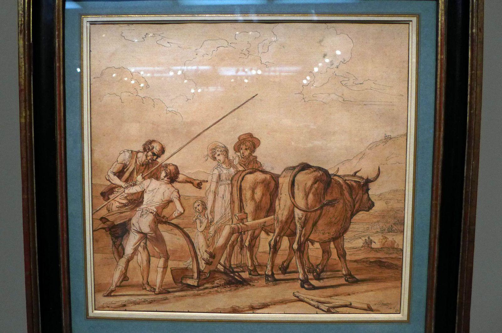 François-André VINCENT, La Leçon d'agriculture (plume et encre brune, lavis brun sur traits de sanguine)