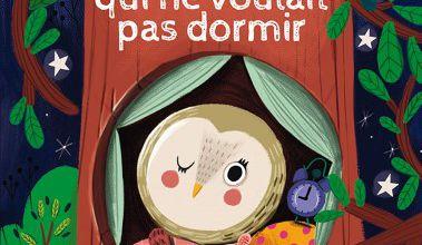 La chouette qui ne voulait pas dormir / Pascal Brissy et Edita Hadjou