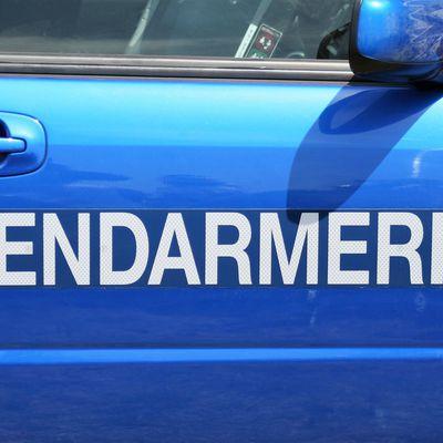 Chevaux mutilés, tués:lagendarmerie au point mort, le gouvernement met en place une cellule d'accompagnement