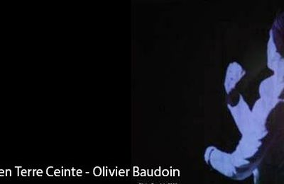 Suffisamment Mur - Voyage en Terre Ceinte - Olivier Baudoin