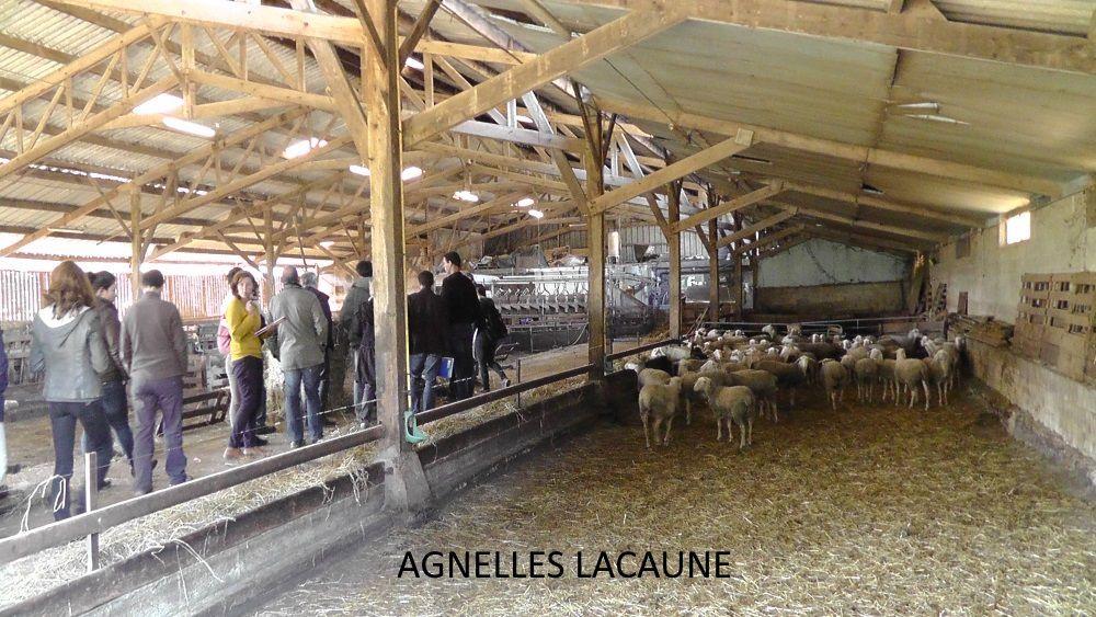 Quelques vues de la bergerie