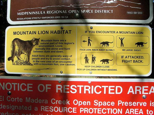 Mountain lion warning sign, posted at Skeggs Point in the El Corte de Madera Creek Open Space Preserve  - San Mateo County, northern California.