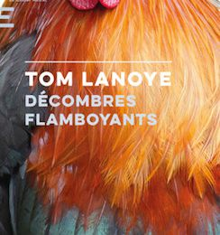 Tom Lanoye : Décombres flamboyants.
