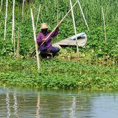 Quelques jours en balade... (2) - Noy et Gilbert en Thaïlande