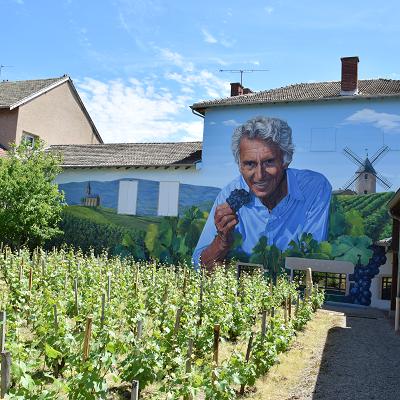 """Une escapade """"vin sur vin"""" au Hameau Duboeuf!*"""