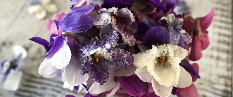 Fleurs de violettes Cristallisées - Bataille Food #66