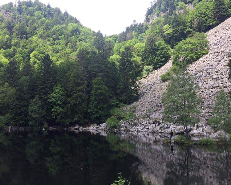 Escapade trail dans les hautes Vosges : oui mais en 2021