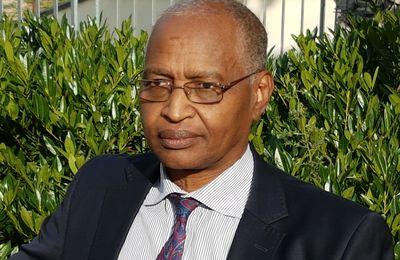 LETTRE DE LA PLATEFORME DE CONCERTATION DE LA DIASPORA TCHADIENNE À Monsieur Le Président du Comité d'organisation du dialogue national inclusif