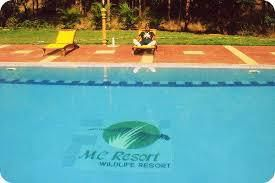 Bandipur Jungle Resorts Offer Everything You Need